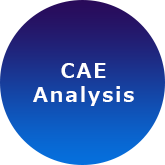 CAE analysis